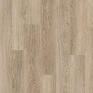 Amiens Oak Light 8mm/32