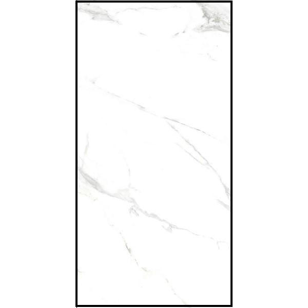 Royal Marble White 60x120