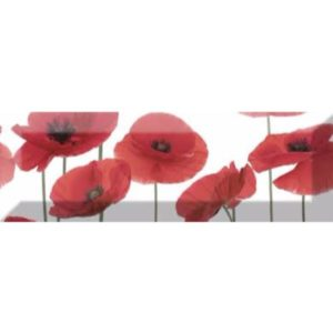 Poppy 04 10x30