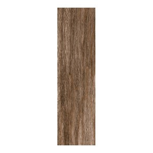 Moringa Brown 15.5x60.5